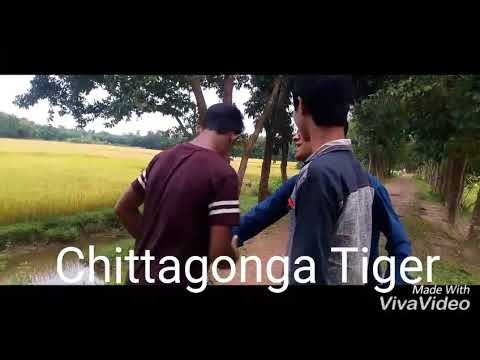 chittagong lions first funny video