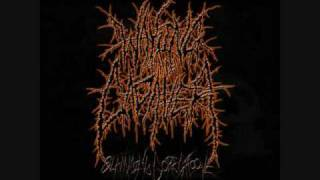 Waking The Cadaver - Terminate With Extreme Prejudice