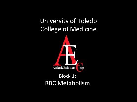 RBC Metabolism