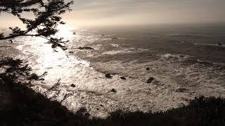 Recording Distant Waves with a Wildtronics SAAM near Redwoods National Park in California
