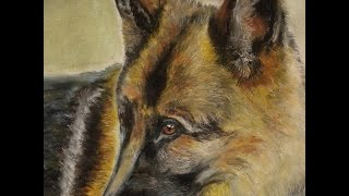 Speed Painting-german Shepherd