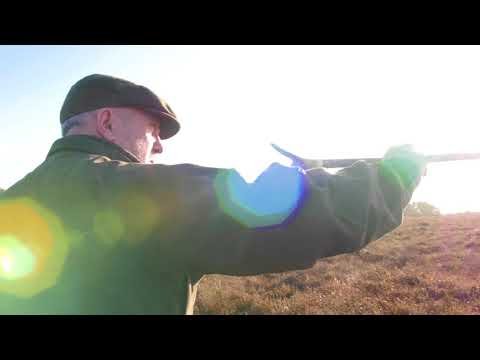 European Championships for Irish Red Setters on Snipe - Full Version