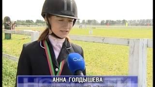 Соревнования по конному спорту. 1-07-15