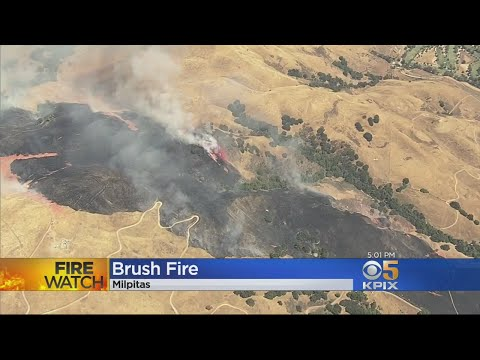 MILPITAS WILDFIRE:  Brush fire burns in the hills above Milpitas