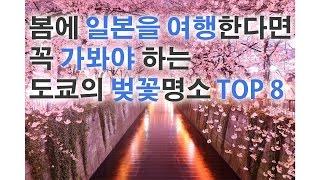 봄에 일본을 여행한다면 꼭 가봐야 하는 도쿄의 벚꽃명소…