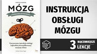 Mózg. Podręcznik użytkownika [Najważniejsze lekcje]