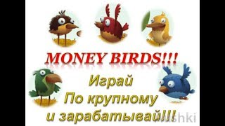 ЗАРАБАТЫВАЙ НА ПТИЦАХ /// MONEY BIRDS