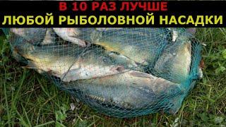 Украл секретный рецепт рыболовной насадки Клюёт вся рыба Насадка для рыбалки Убийца карася