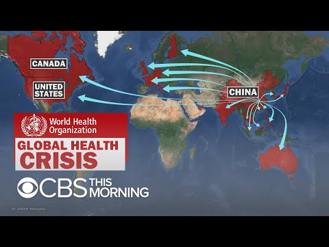 Doctor weighs in on global coronavirus fears after WHO calls emergency