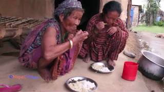 Cooking organic fish and eating together by village life ll Real lifestyle of Asian village people