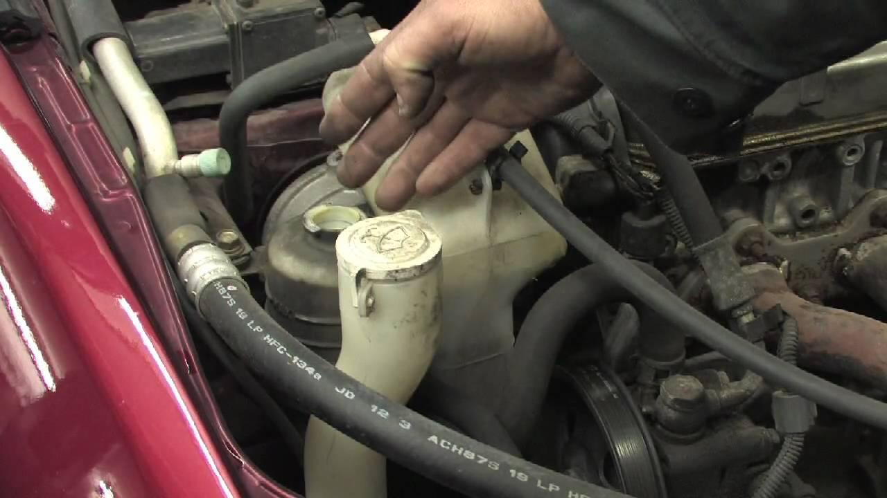 2004 Ford Focus Timing Belt Mustang