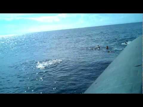 Submarine Swim Call
