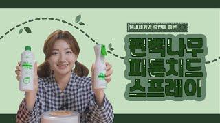 [초록느낌]환경부에서 인증된 친환경 편백나무 피톤치드원…