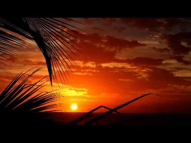 Martinique en été...Ils ont plutot aimés !