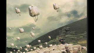 PINK FLOYD Sheep (film clips and lyrics)