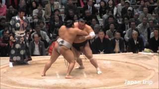 貴ノ岩 vs 豊響の取組。 2016大相撲春場所2日目。