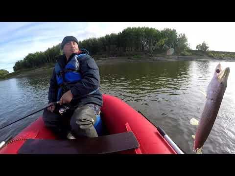 Рыбалка на Оби в Колпашево (день второй)