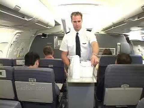Flight Attendants Job Description