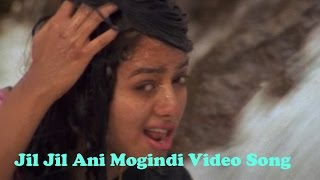 Jil Jil Ani Mogindi Video Song || Pelli Peetalu Movie || Jagapathi Babu, Soundarya