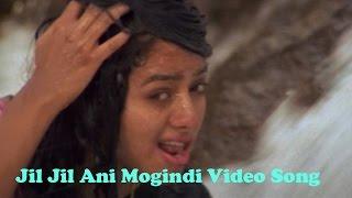 jil jil ani mogindi video song    pelli peetalu movie    jagapathi babu soundarya