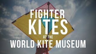 Fighter Kites at the World Kite Museum