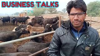 Katta farming in pakistan/Full information Katta Farming/How to start katta farming in Pakistan