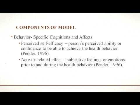 Nola Pender Health Promotion Model