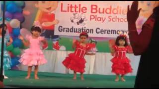 Chan kiti diste phool pakharu @little buddies