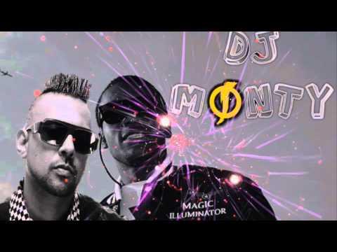 Gimme The Light Moombahton Remix DJ MONTY