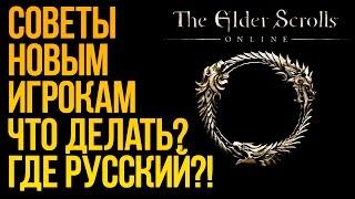the Elder Scrolls Online. Обзор от новичка