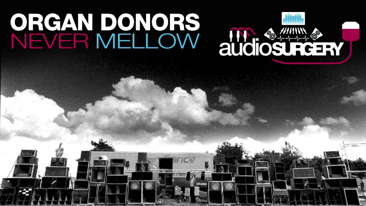 Organ Donors - Never Mellow (OUT NOW) - YouTube
