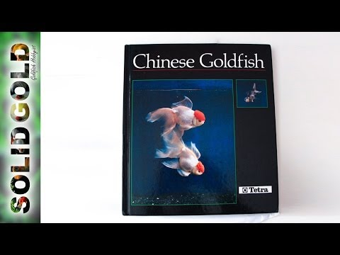 Chinese Goldfish | Book Review