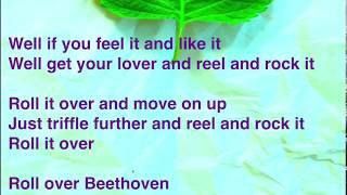THE BEATLES-Roll Over Beethoven(Cover)