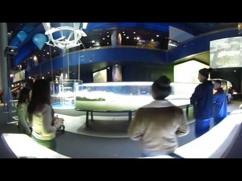 Museum of Science and Industry - Chicago - 360