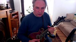The Longford Collector (reel) on mandolin