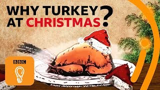 Why do we eat turkey for Christmas (and Thanksgiving)? | BBC Ideas
