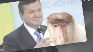 Приколы с Януковичем