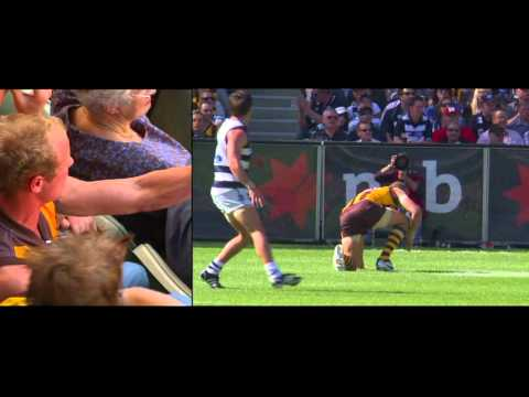 Hawthorn premiership documentary