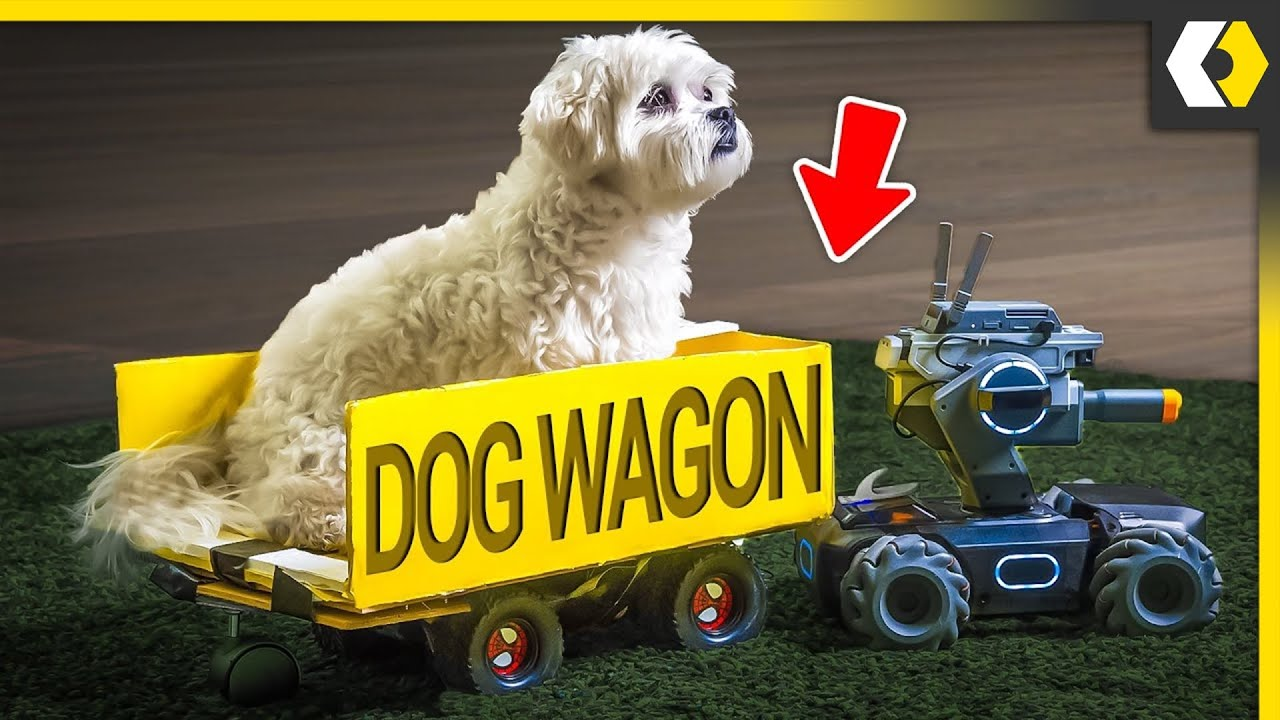 Download I Taught My Dog To Drive A Robot