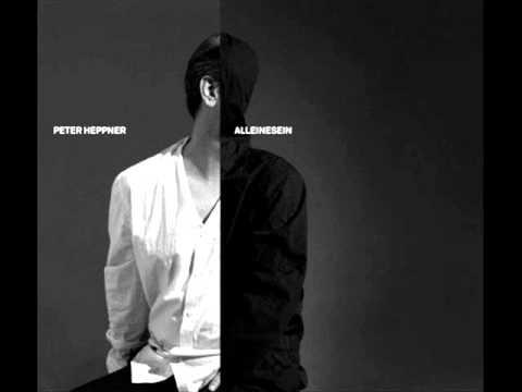 скачать paul van dyk. Трек Shiller And Peter Heppner - Alleinesein (Paul Van Dyk Remix) в mp3 320kbps