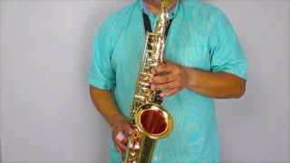 Tygenn AS-87 Alto Saxopohone