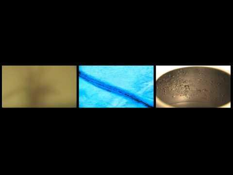 C/K/P (video art)