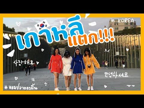 Vlog เกาหลีแตก!!!   เดินอยู่ดีๆเจอ X1 เฉยเลย!!! ( KOREAN CC )