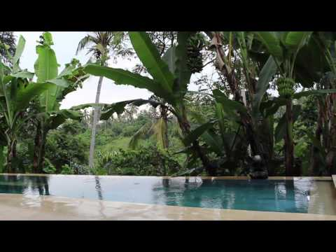 Ubud Villa Rainy Jungle Morning -  Bali 1hr relaxation