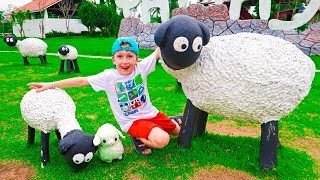 Eli helps little Sheep to find Mommy