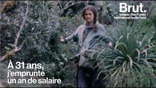 Une vie : Dian Fossey