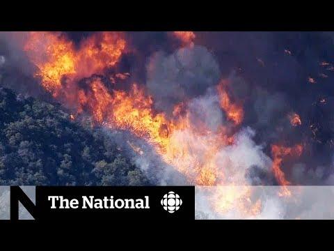 Wildfire burns through Californias Thousand Oaks