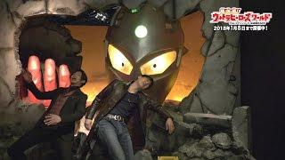 https://www.nasuhai.co.jp/ 1/1スケールの超巨大ウルトラマン肩上像(...