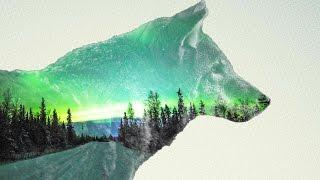 Уроки adobe photoshop:5 как сделать эффект double exposure