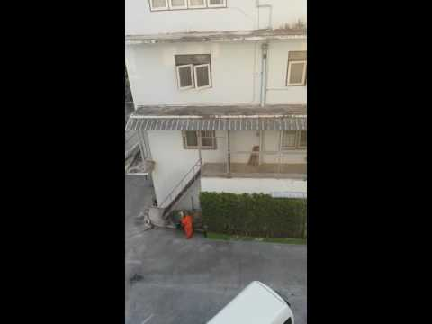 A view from the royal pavilion hotel HuaHin a monk stops to rearrange himself and his flowers